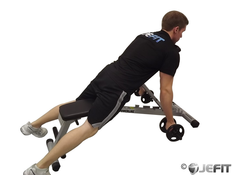 Dumbbell Prone Incline Biceps Curl