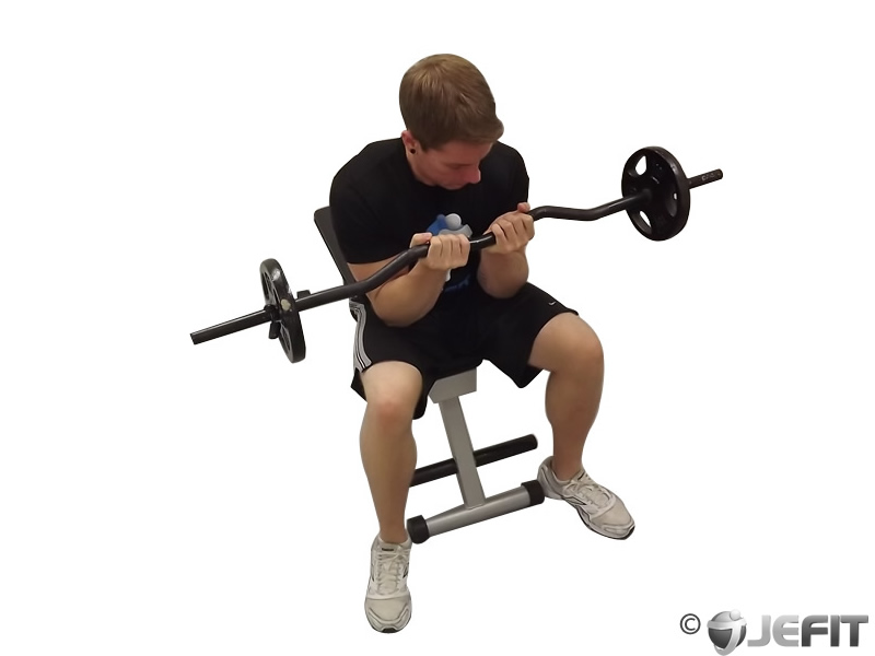 EZ Bar Seated Close Grip Concentration Curl