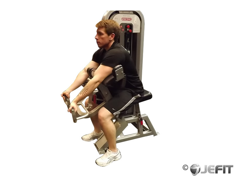 """Search Results for """"Home Exercise Routine Biceps ...  Preacher Curls At Home"""