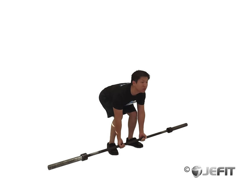 Bicep Curl with Deadlift