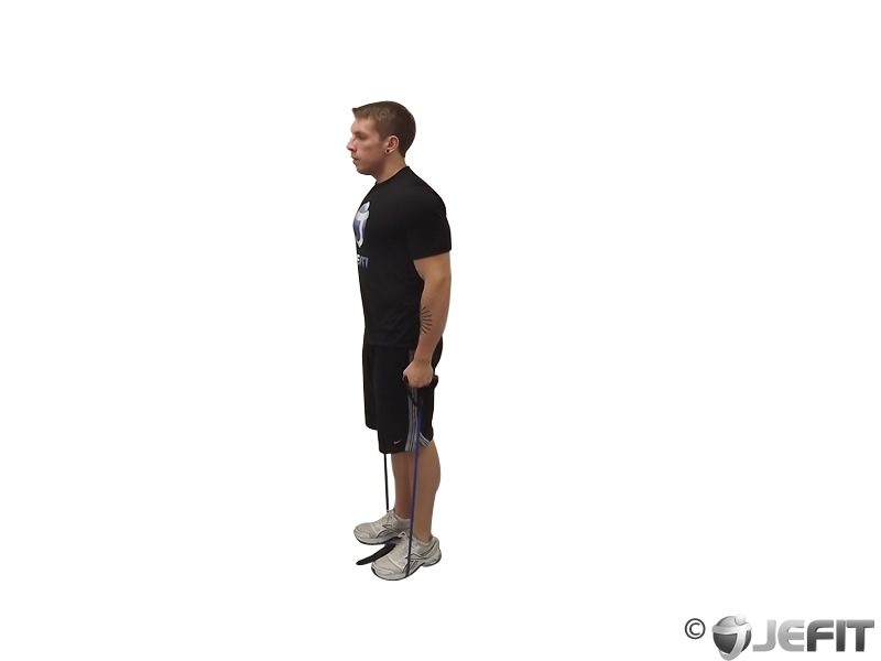 Band Calf Raises