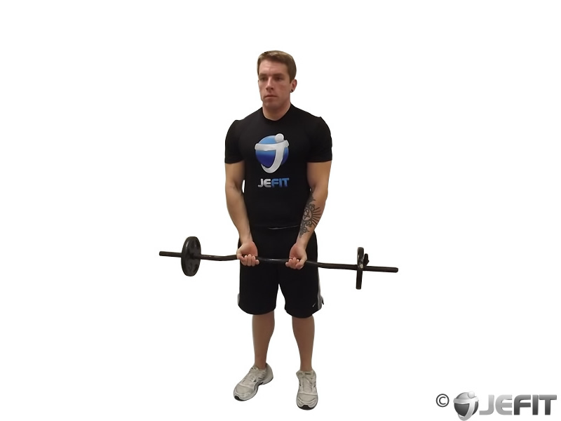 EZ Bar Close Grip Curl
