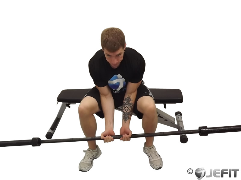 Seated Close Grip Concentration Barbell Curl