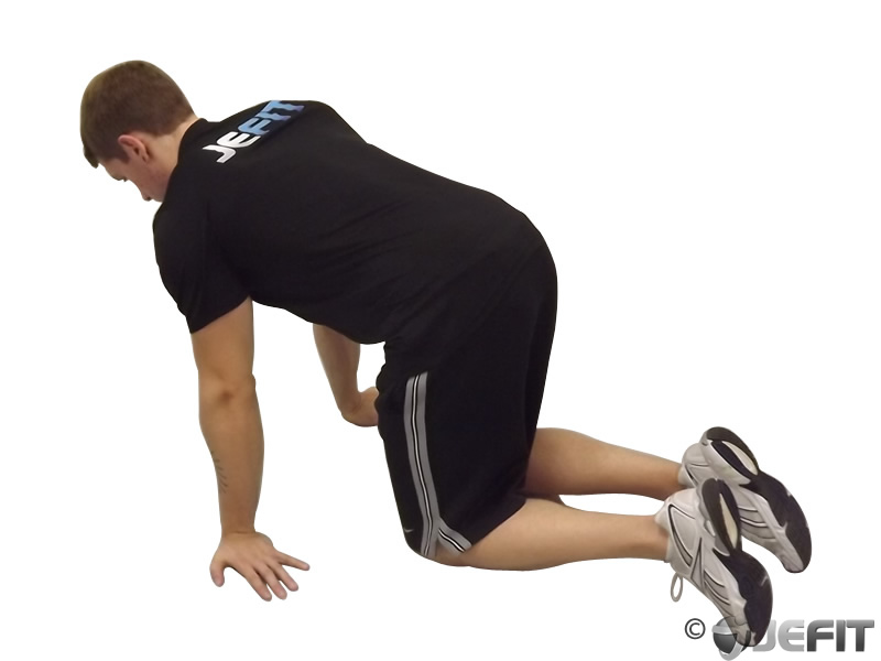 Kneeling Forearm Stretch