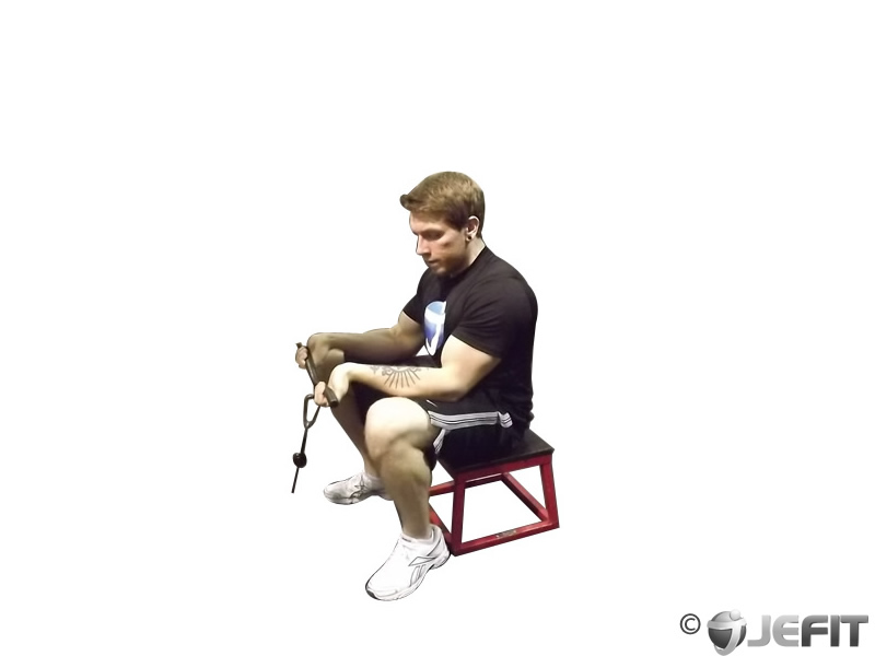 Seated Two Arm Palms Up Low Pulley Wrist Curl