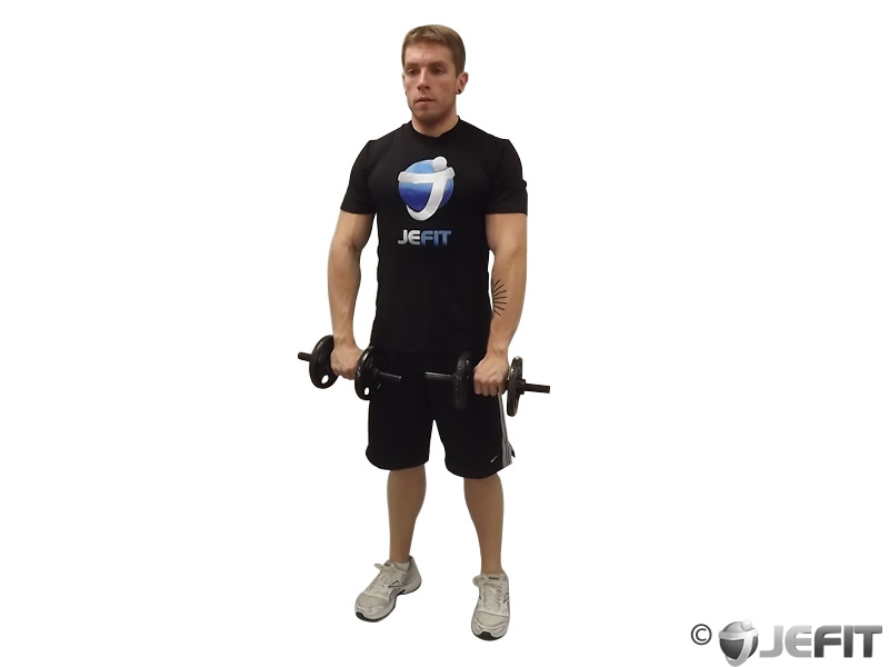 Front Two Dumbbell Raise