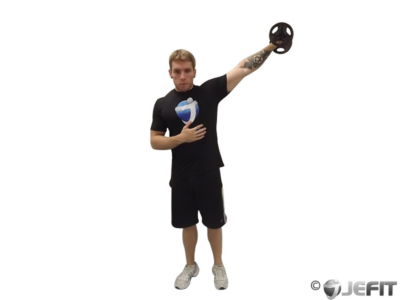 Dumbbell One Arm Side Lateral Raise - Exercise Database ...