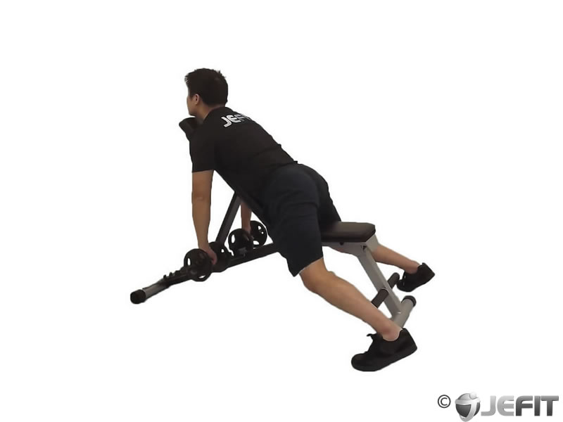 Reverse Flyes With External Rotation