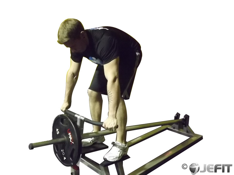T Bar Row - Exercise D...T Bar Rows