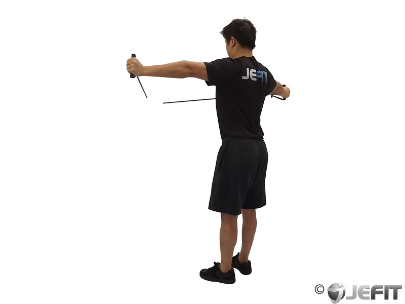 band back fly - exercise database