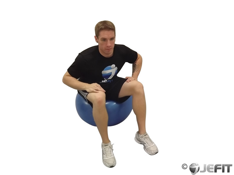 Pelvic Circles Seated on Exercise Ball