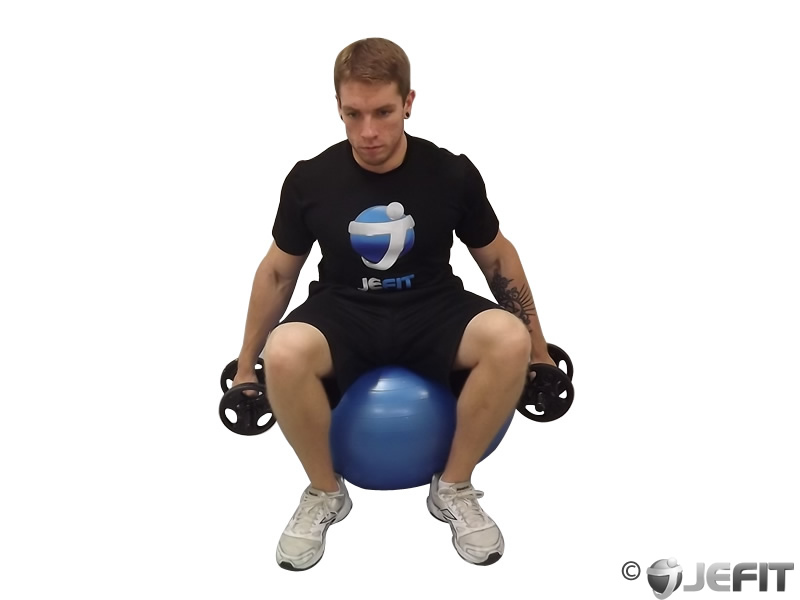 One Arm Bicep Curl on Exercise Ball