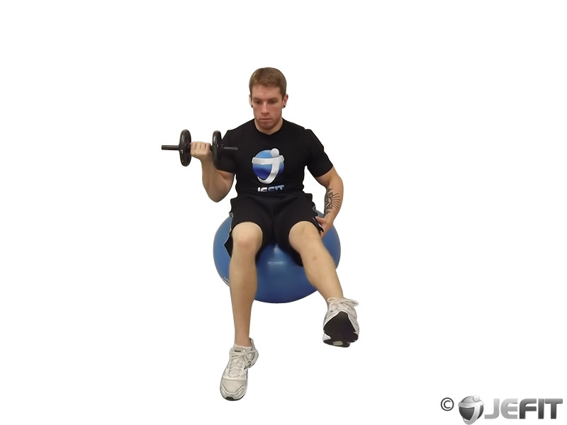 Dumbbell seated one arm one leg bicep curl on exercise ball exercise