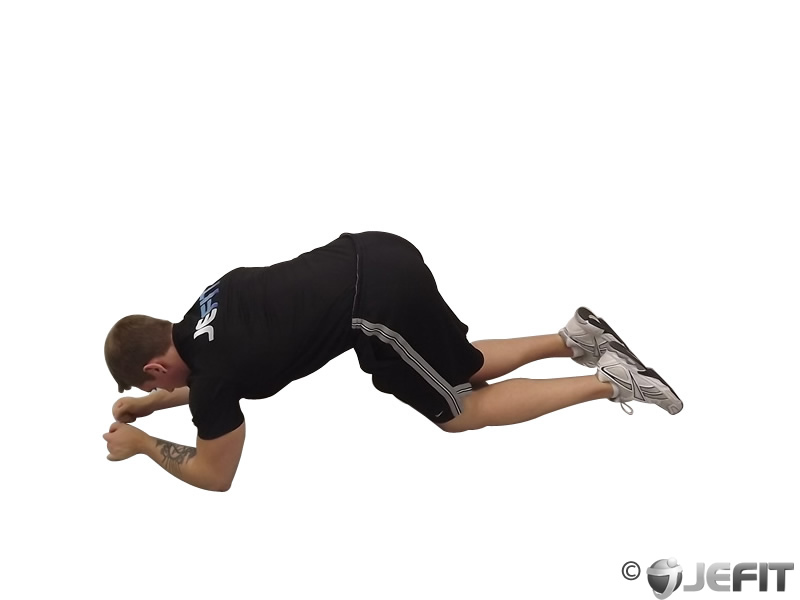 Modified Push Up to Forearms