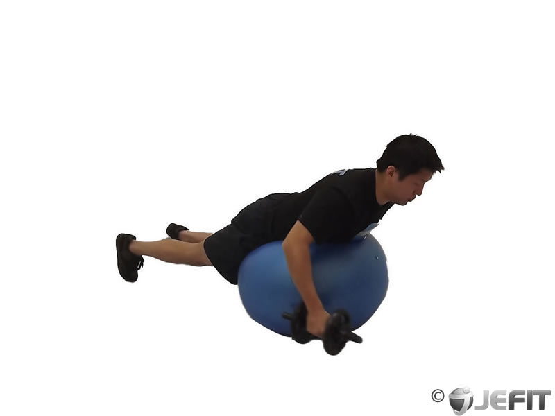 One Arm Rear Delt Fly on Exercise Ball