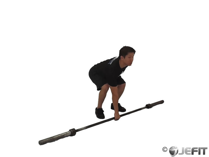 Barbell One Arm Bent Over Row