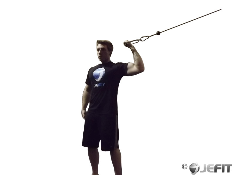 Cable One Arm High Curl - Exercise Database | Jefit - Best ...