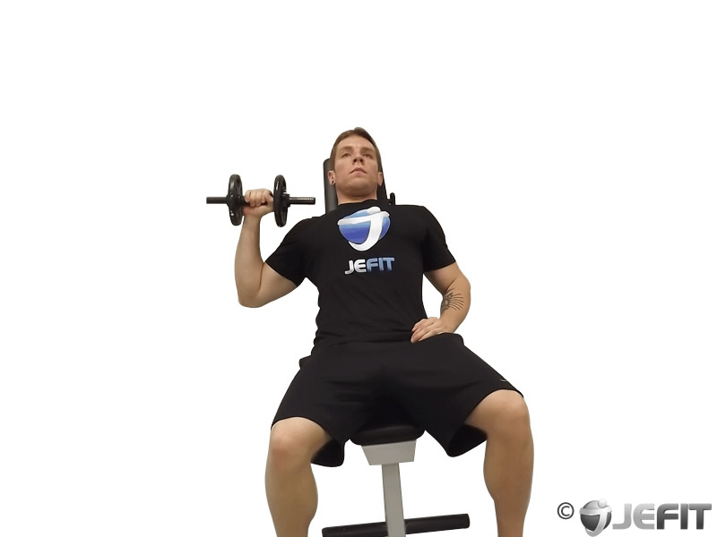 Dumbbell One Arm Incline Chest Press