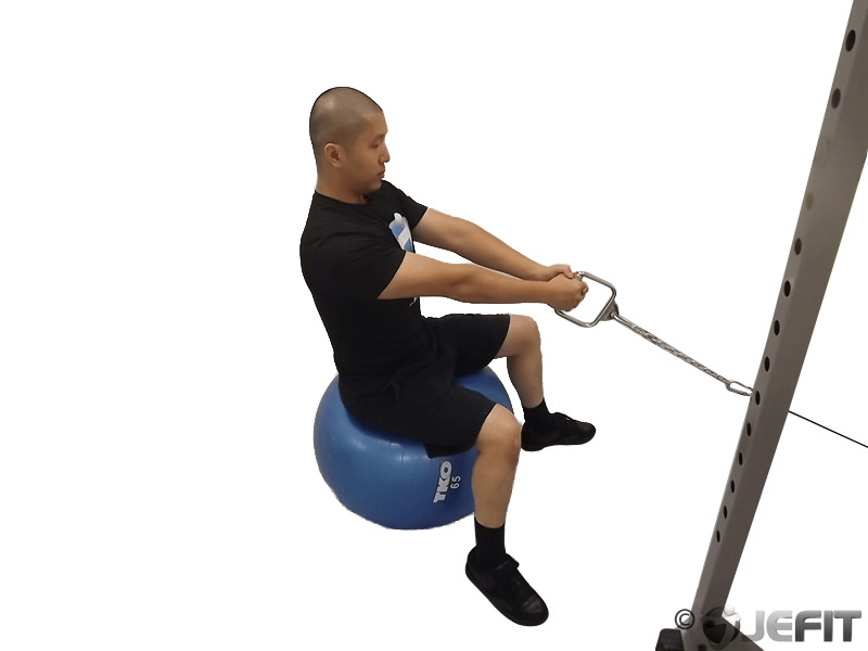 Cable Twist on Exercise Ball