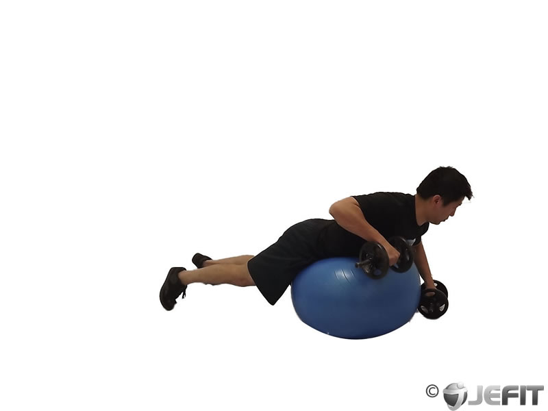 Prone Alternating Rear Delt Row on Exercise Ball