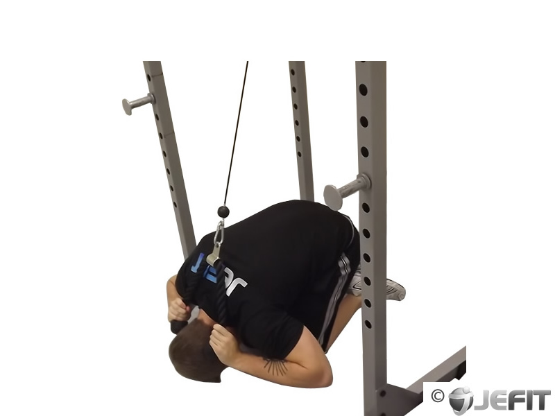 Cable Crunch Exercise Database Jefit Best Android
