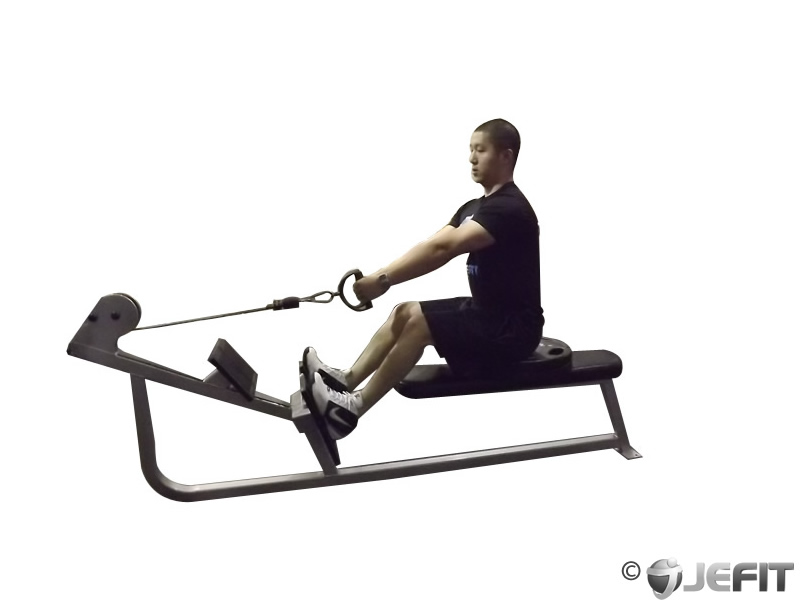 exercise machine for lower back