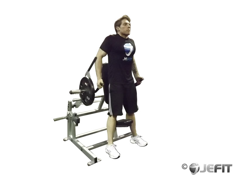 leverage shrug - exercise database