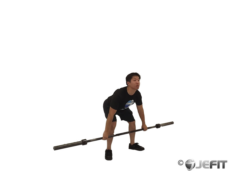 Hang Snatch Below the Knees