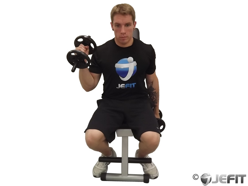 Alternate Seated Hammer Curl