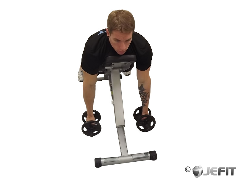 Dumbbell Two Arm Seated Hammer Curl on Exercise Ball - Exercise ...