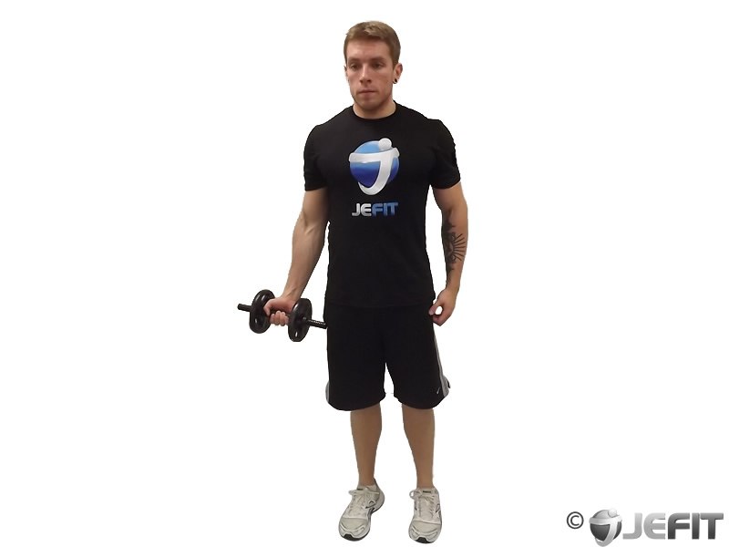 One Arm Standing Dumbbell Curl