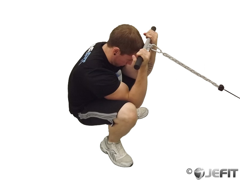 Cable squatting curl exercise database jefit best for Floor underhand cable fly