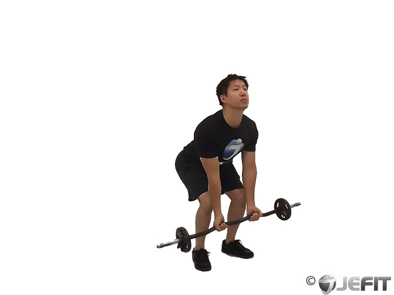 EZ Bar Reverse Grip Bent Over Row