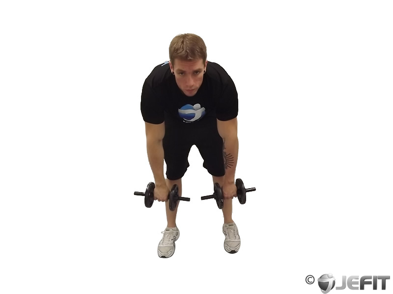 Palm Rotational Row