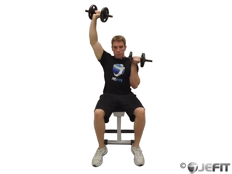 Alternate Seated Arnold Press
