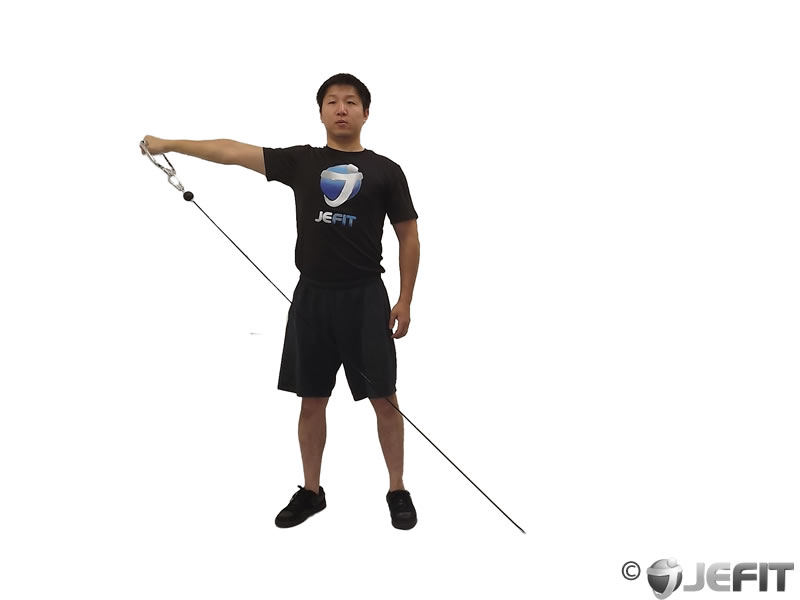 cable one arm lateral raise exercise database jefit