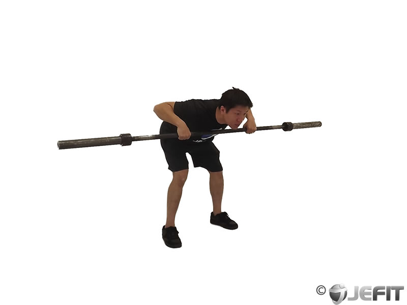 Barbell Rear Delt Row To NeckOverhand Barbell Row
