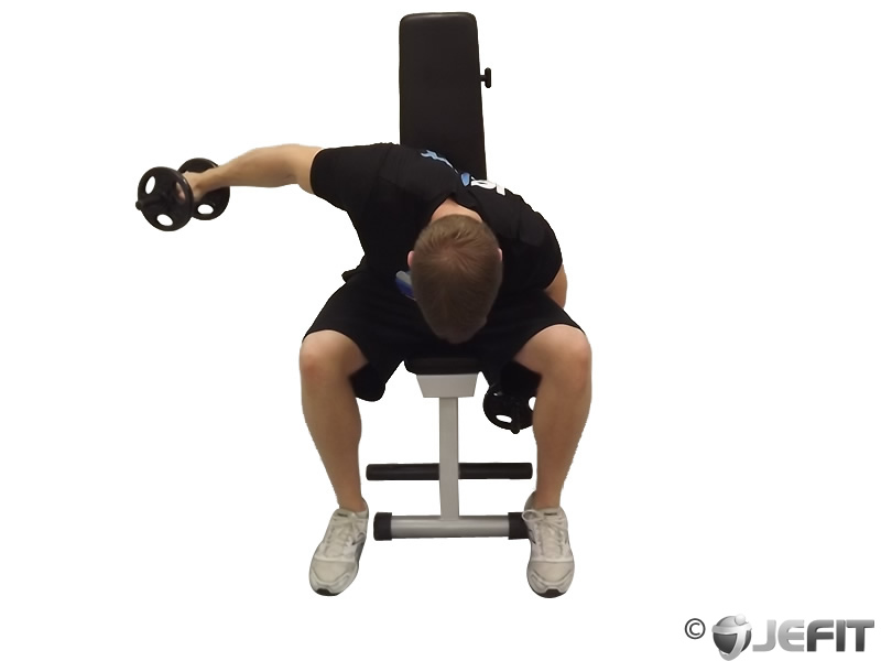 Alternate Seated Bent Over Dumbbell Reverse Fly