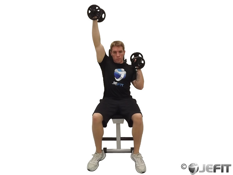 Dumbbell Alternate Seated Palms In Press Exercise