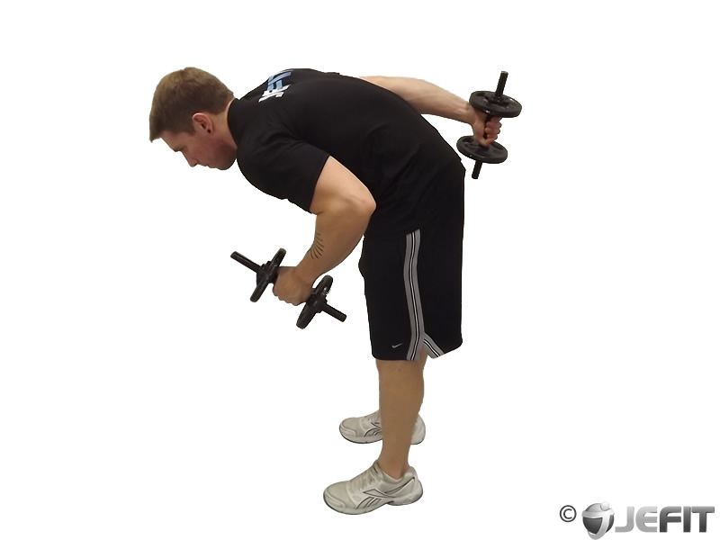 Alternate Bent Over Dumbbell Kickback