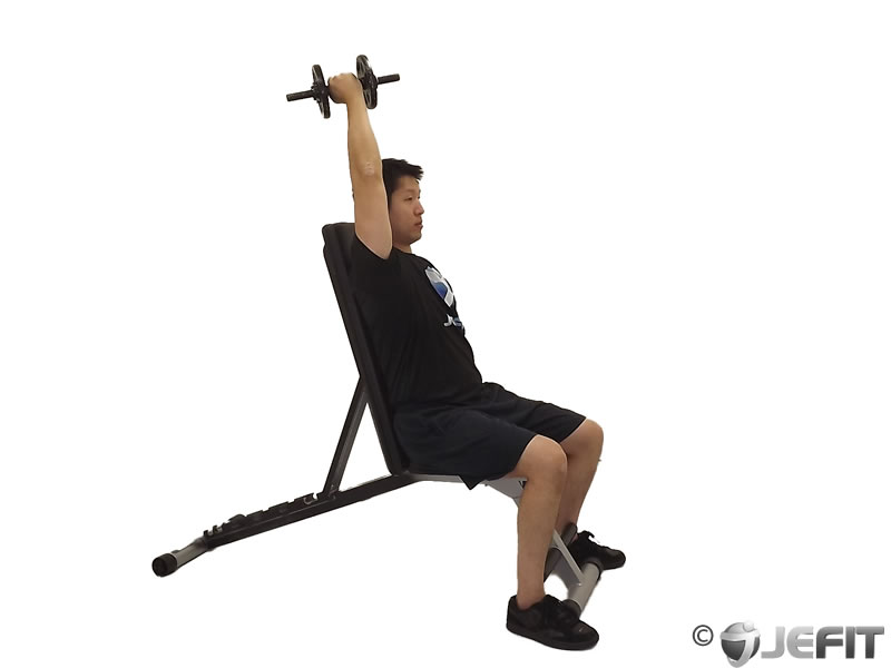 Overhead Triceps Extension Machine Overhead Tricep Extension