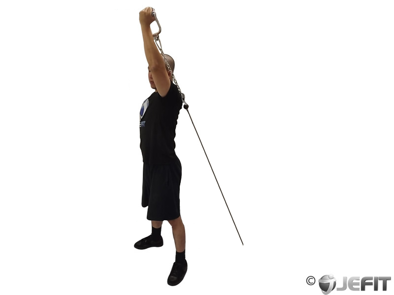 Cable Standing Reverse Grip One Arm Overhead Tricep ...