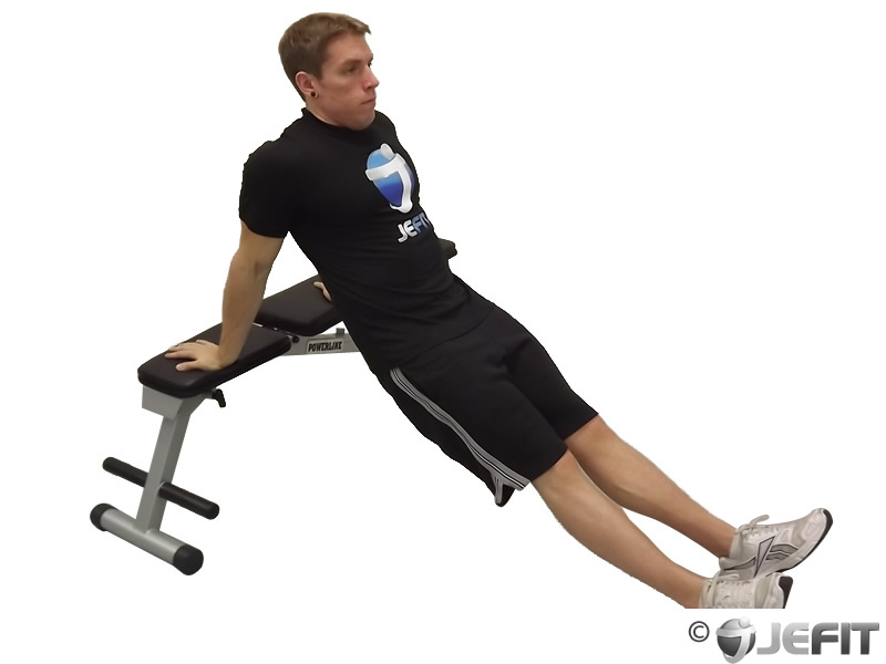 Seated Tricep Dip Exercise Database Jefit Best