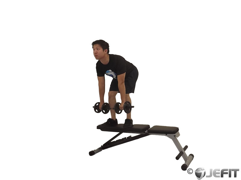 Dumbbell Stiff Leg Deadlift on Bench