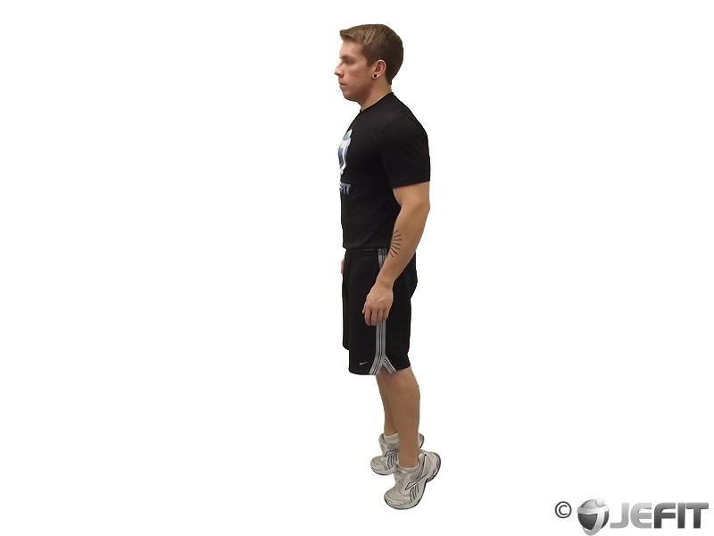 Bodyweight Standing Calf Raise - Exercise Database | Jefit ...