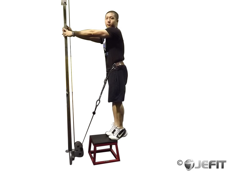 Cable calf raise exercise database jefit best for Floor underhand cable fly