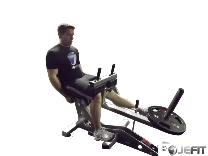 One Leg Seated Calf Raise