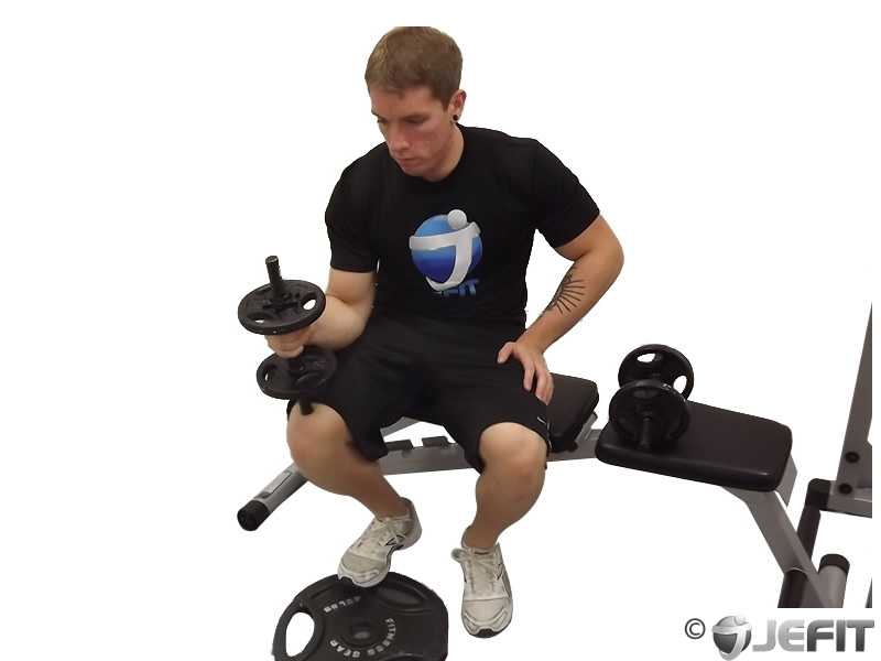 Seated calf raises with dumbbells