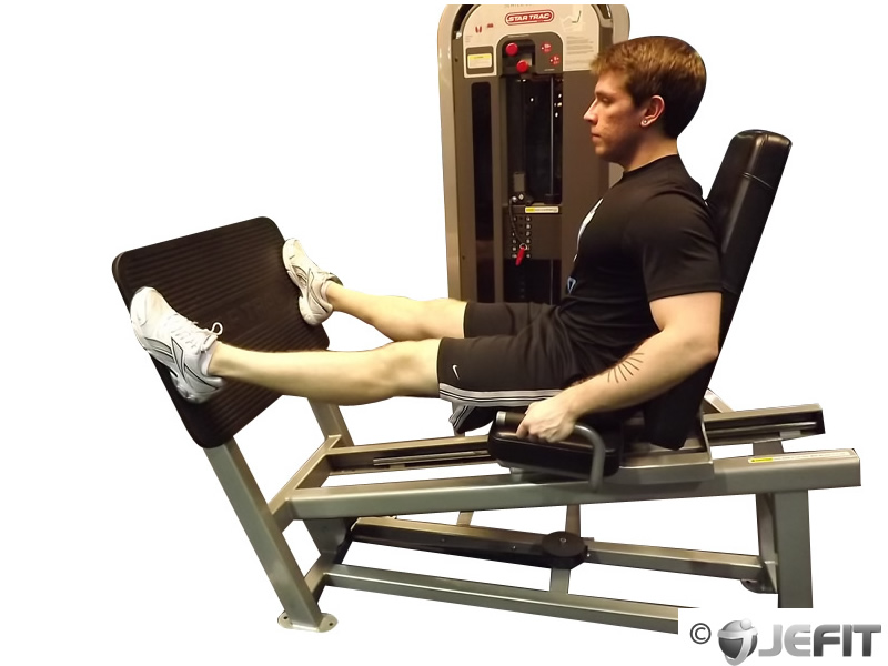 Leg Press Machine With Wide Stance Exercise Database