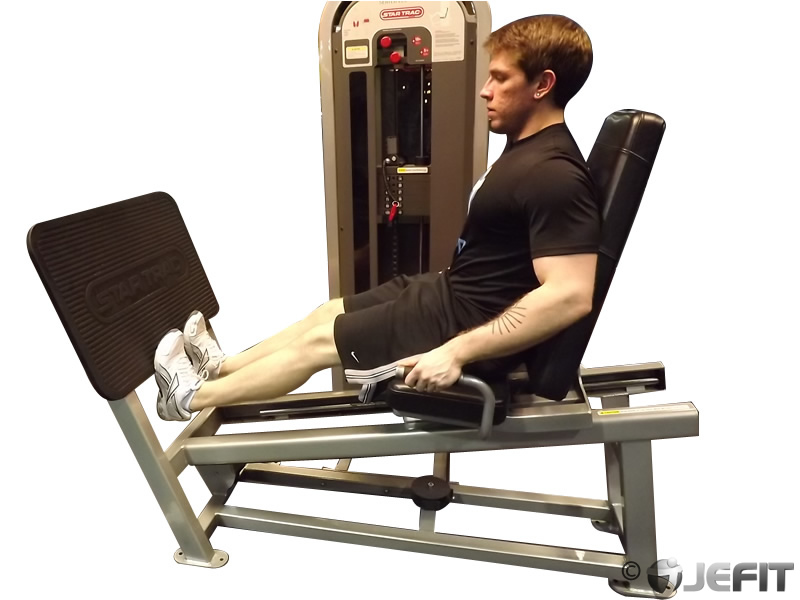 Calf Workouts Sitting Down - Most Popular Workout Programs